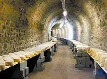 cheese tour cellar